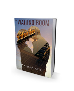 The Waiting Room, by Alysha Kaye.