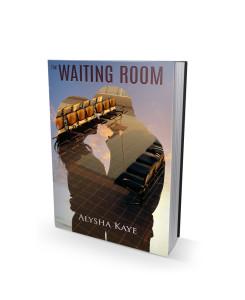 The Waiting Room, by Alysha Kaye.