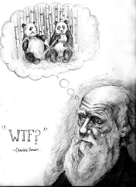 Non-Darwinian Pandas — Emily Story